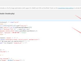 如何在WORDPRESS里面放置GOOGLE广告的跟踪代码Google Tag Manager